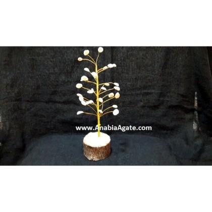 GOMTI CHAKRA (SHELLS) TREE 30 BDS
